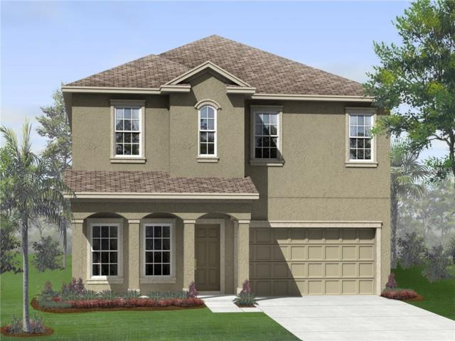 1185 Montgomery Bell Road, Wesley Chapel, FL 33543 (MLS #T2938927) :: The Duncan Duo Team