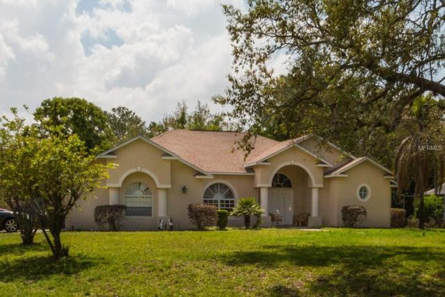 4490 Rachel Boulevard, Weeki Wachee, FL 34607 (MLS #T2938942) :: Mark and Joni Coulter | Better Homes and Gardens