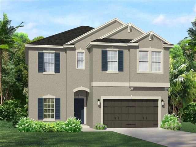 1367 Montgomery Bell Road, Wesley Chapel, FL 33543 (MLS #T2938943) :: The Duncan Duo Team