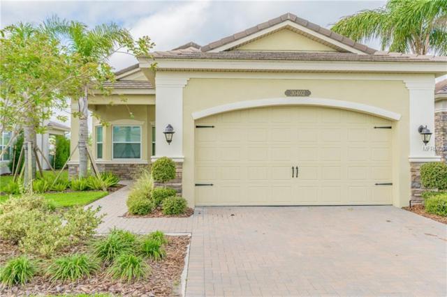 30402 Palmer Oak Drive, Wesley Chapel, FL 33543 (MLS #T2939114) :: Team Bohannon Keller Williams, Tampa Properties