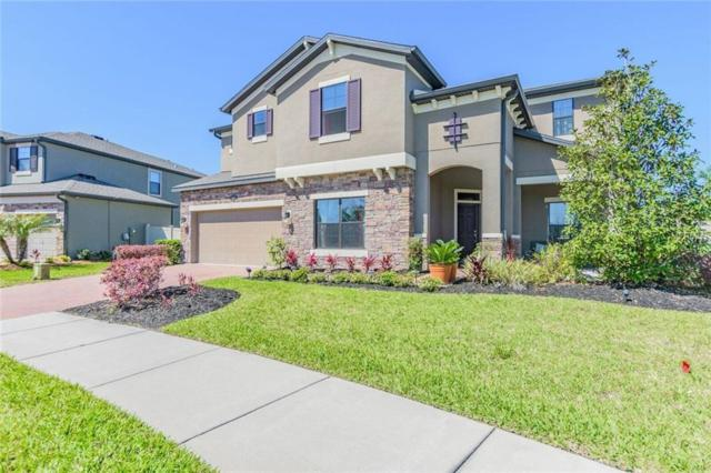 2035 Fox Grape Loop, Lutz, FL 33558 (MLS #T2939142) :: The Duncan Duo Team