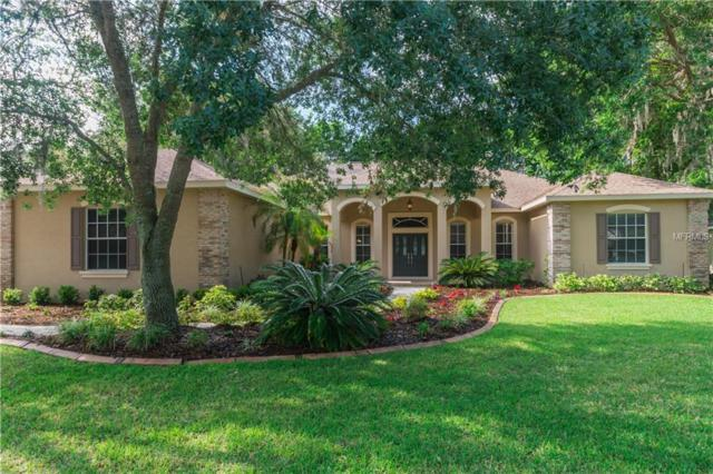 6311 Wild Orchid Drive, Lithia, FL 33547 (MLS #T3100083) :: Team Bohannon Keller Williams, Tampa Properties