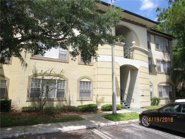 17112 Carrington Park Drive #926, Tampa, FL 33647 (MLS #T3100169) :: Team Bohannon Keller Williams, Tampa Properties