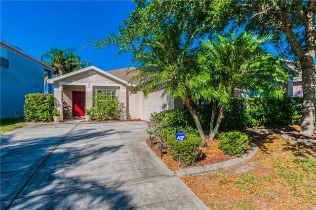 8614 Tidal Bay Lane, Tampa, FL 33635 (MLS #T3100178) :: Griffin Group