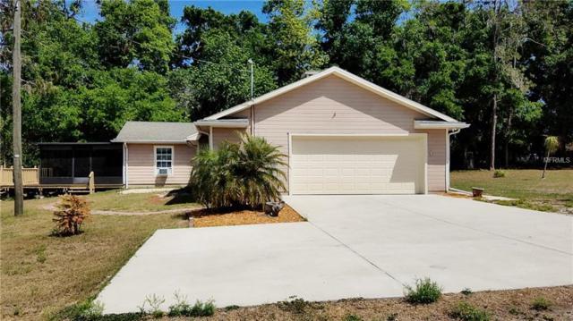 11633 John Robbins Road, Riverview, FL 33578 (MLS #T3100236) :: The Duncan Duo Team