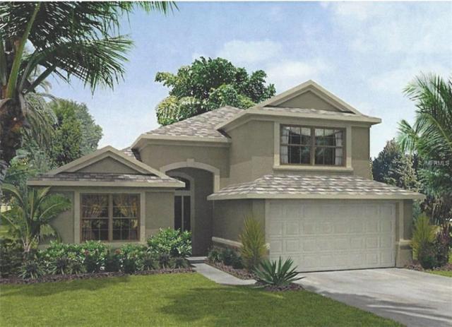 22126 Rosewall Court, Land O Lakes, FL 34639 (MLS #T3100556) :: Team Bohannon Keller Williams, Tampa Properties