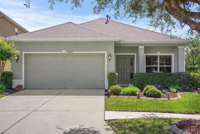 20605 Whitewood Way, Tampa, FL 33647 (MLS #T3100622) :: Delgado Home Team at Keller Williams