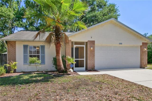2338 Rothenfeld Court, Land O Lakes, FL 34639 (MLS #T3100849) :: Cartwright Realty