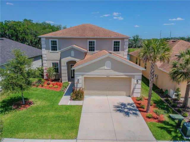 8622 Deep Maple Drive, Riverview, FL 33578 (MLS #T3100993) :: Dalton Wade Real Estate Group