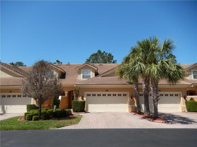 1905 Paw Paw Place, Trinity, FL 34655 (MLS #T3101066) :: KELLER WILLIAMS CLASSIC VI