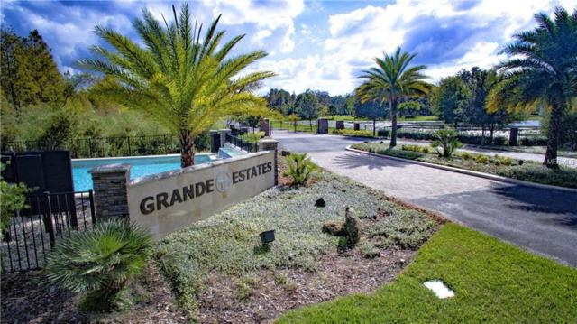 17602 Grande Estates Place, Lutz, FL 33549 (MLS #T3101169) :: GO Realty