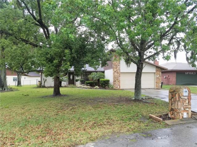 2451 Shorewood Lane, Land O Lakes, FL 34639 (MLS #T3101202) :: Team Bohannon Keller Williams, Tampa Properties