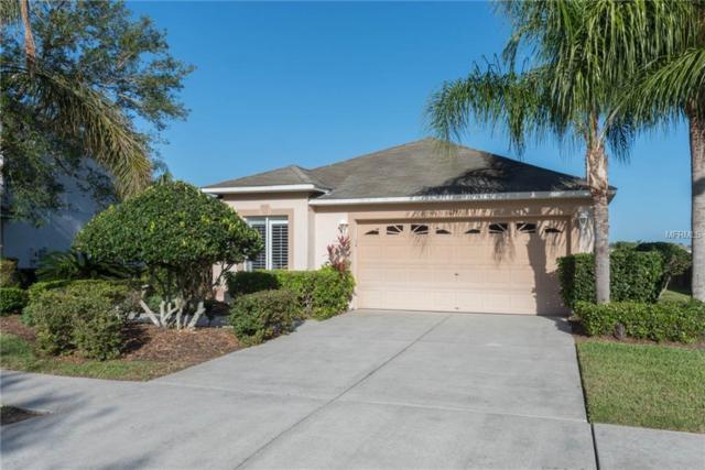 4755 Holdsworth Drive, Land O Lakes, FL 34639 (MLS #T3101217) :: Team Bohannon Keller Williams, Tampa Properties