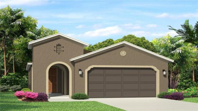 29010 Trevi Place, Wesley Chapel, FL 33543 (MLS #T3101318) :: The Duncan Duo Team