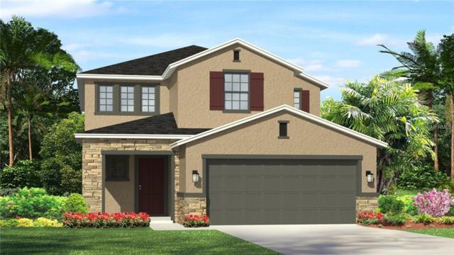 28958 Trevi Place, Wesley Chapel, FL 33543 (MLS #T3101325) :: The Duncan Duo Team