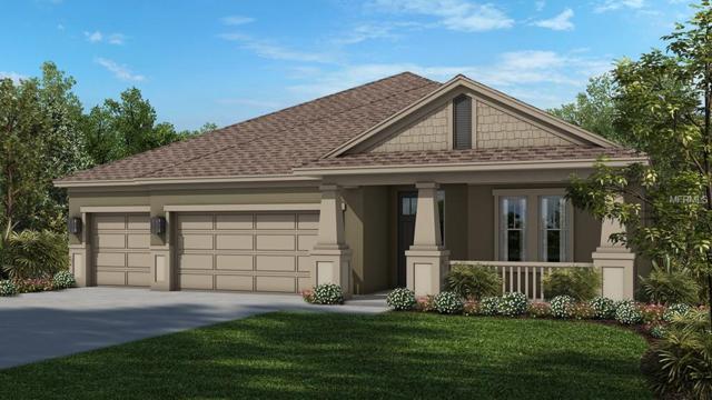 5877 Anise Drive, Sarasota, FL 34238 (MLS #T3101339) :: TeamWorks WorldWide