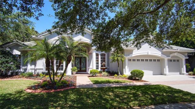 21001 Lake Vienna Drive, Land O Lakes, FL 34638 (MLS #T3101342) :: Team Bohannon Keller Williams, Tampa Properties