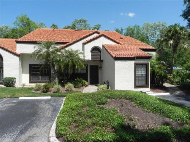 5444 Villa Deste Court, Wesley Chapel, FL 33543 (MLS #T3101360) :: The Duncan Duo Team