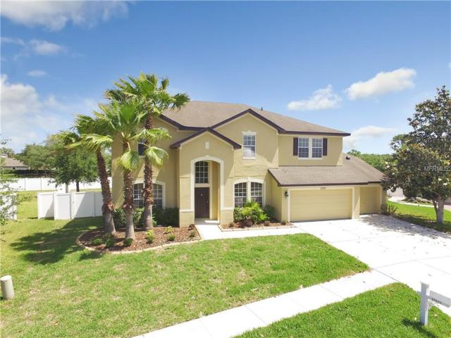 11833 Newberry Grove Loop, Riverview, FL 33579 (MLS #T3101368) :: Lovitch Realty Group, LLC