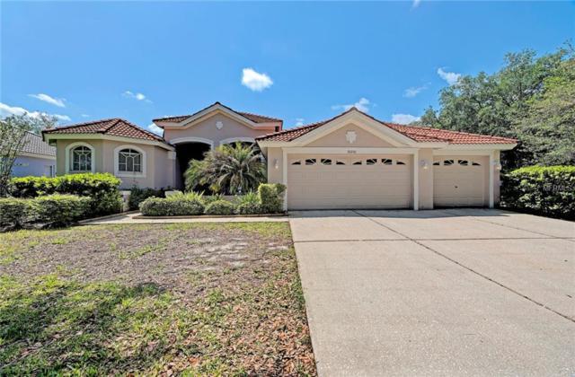 10201 Arbor Side Drive, Tampa, FL 33647 (MLS #T3101488) :: Team Bohannon Keller Williams, Tampa Properties