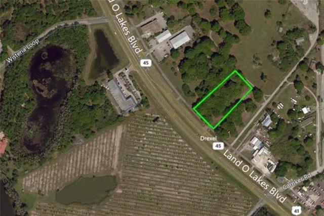 6712 Land O Lakes Boulevard, Land O Lakes, FL 34638 (MLS #T3101495) :: Team Bohannon Keller Williams, Tampa Properties