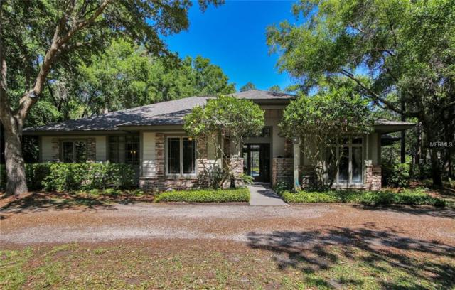 19437 Hiawatha Road, Odessa, FL 33556 (MLS #T3101540) :: Team Bohannon Keller Williams, Tampa Properties