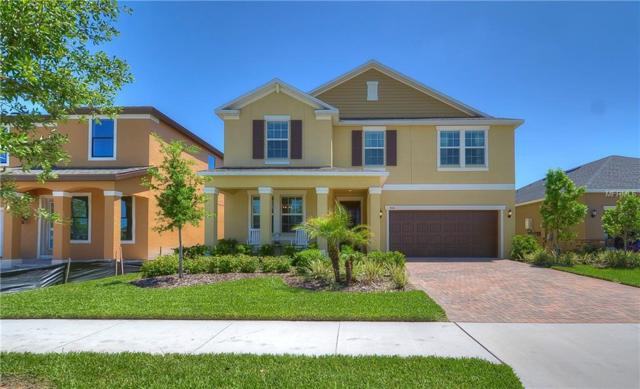 4110 Crayford Court, Land O Lakes, FL 34638 (MLS #T3101543) :: The Duncan Duo Team