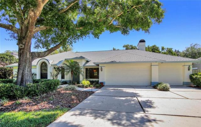 16127 Vanderbilt Drive, Odessa, FL 33556 (MLS #T3101547) :: Team Bohannon Keller Williams, Tampa Properties