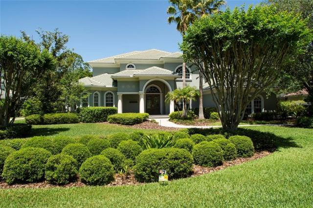 6414 E Maclaurin Drive, Tampa, FL 33647 (MLS #T3101614) :: Team Pepka