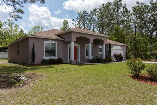9061 N Marcus Way, Citrus Springs, FL 34433 (MLS #T3101647) :: G World Properties