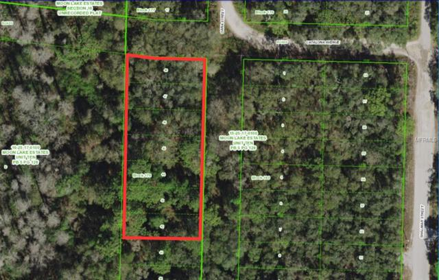 Oana Street, New Port Richey, FL 34654 (MLS #T3101689) :: G World Properties