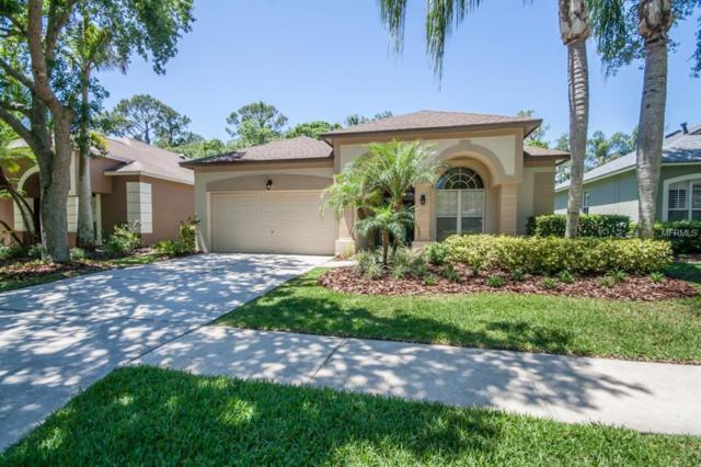 12007 Oaksbury Drive, Tampa, FL 33626 (MLS #T3101710) :: Team Bohannon Keller Williams, Tampa Properties