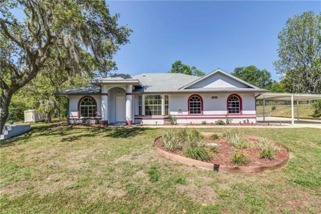 5552 S Bristol Terrace, Inverness, FL 34452 (MLS #T3101723) :: Team Pepka