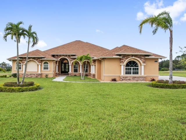 9917 Preakness Stakes Way, Dade City, FL 33525 (MLS #T3101743) :: Team Pepka