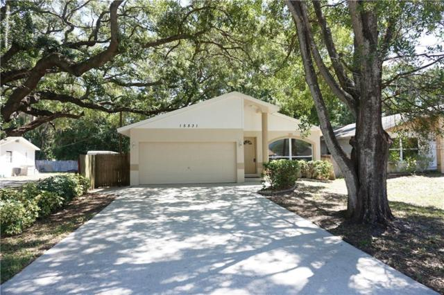 15531 Avalon Avenue, Clearwater, FL 33760 (MLS #T3101752) :: Dalton Wade Real Estate Group