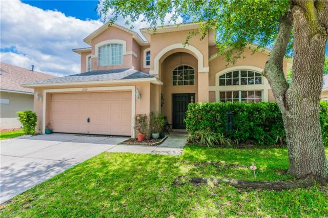 12520 Sparkleberry Road, Tampa, FL 33626 (MLS #T3101775) :: Team Bohannon Keller Williams, Tampa Properties