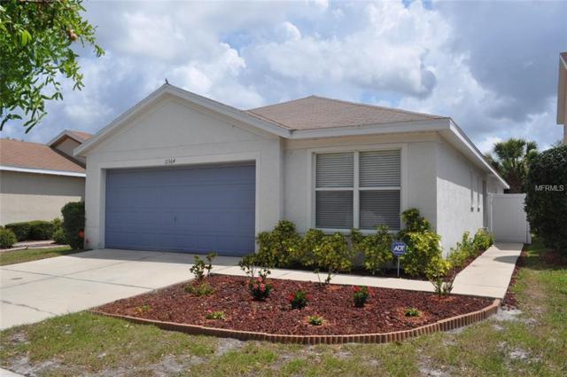 11364 Cocoa Beach Drive, Riverview, FL 33569 (MLS #T3101792) :: Dalton Wade Real Estate Group