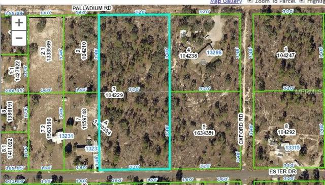 13252 Palladium Road, Brooksville, FL 34613 (MLS #T3101799) :: Cartwright Realty