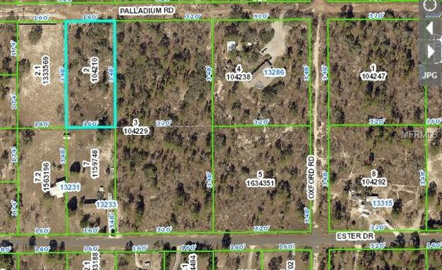 13220 Palladium Road, Brooksville, FL 34613 (MLS #T3101822) :: Cartwright Realty