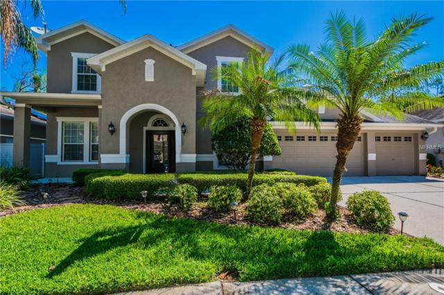 16173 Colchester Palms Drive, Tampa, FL 33647 (MLS #T3101875) :: Team Bohannon Keller Williams, Tampa Properties