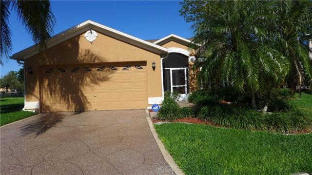 1112 Conch Court, Wesley Chapel, FL 33544 (MLS #T3101892) :: Team Bohannon Keller Williams, Tampa Properties