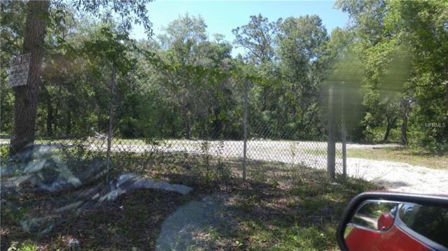 10319 Jungle Street, New Port Richey, FL 34654 (MLS #T3101901) :: Team Pepka