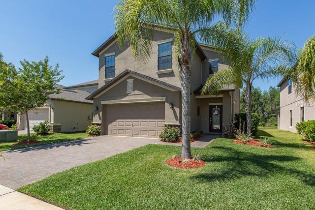 1763 Hadden Hall Place, Trinity, FL 34655 (MLS #T3101903) :: Delgado Home Team at Keller Williams