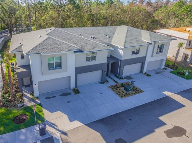 12804 Sanctuary Vista Trail #15, Tampa, FL 33625 (MLS #T3101908) :: Team Pepka