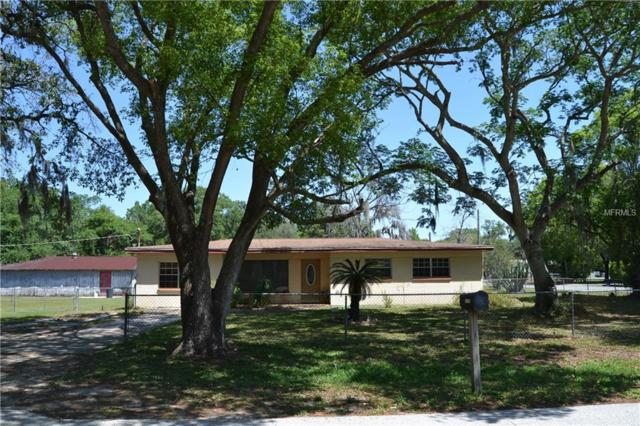 11616 Tucker Road, Riverview, FL 33569 (MLS #T3101909) :: Team Pepka