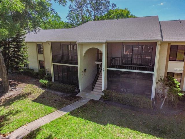 1441 Pine Glen Lane E1, Tarpon Springs, FL 34688 (MLS #T3101933) :: Delgado Home Team at Keller Williams