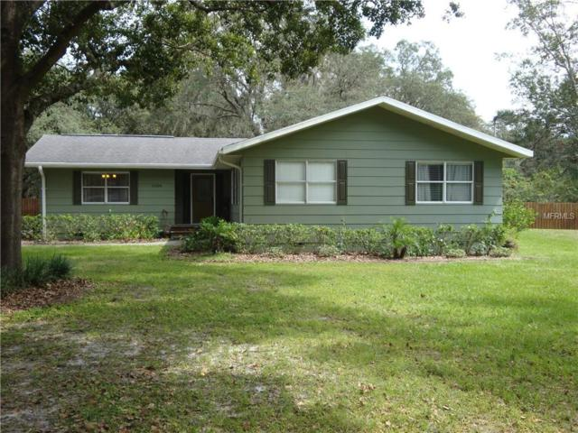 11304 Leprechaun Drive, Riverview, FL 33569 (MLS #T3101943) :: Griffin Group