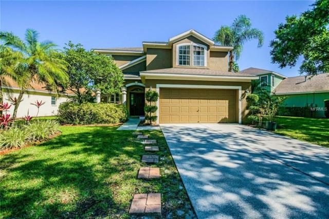 9917 Bridgeton Drive, Tampa, FL 33626 (MLS #T3101952) :: Team Bohannon Keller Williams, Tampa Properties