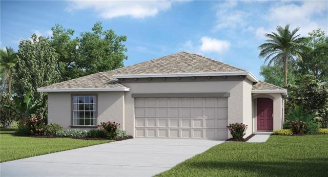 17128 White Mangrove Drive, Wimauma, FL 33598 (MLS #T3101953) :: Team Bohannon Keller Williams, Tampa Properties