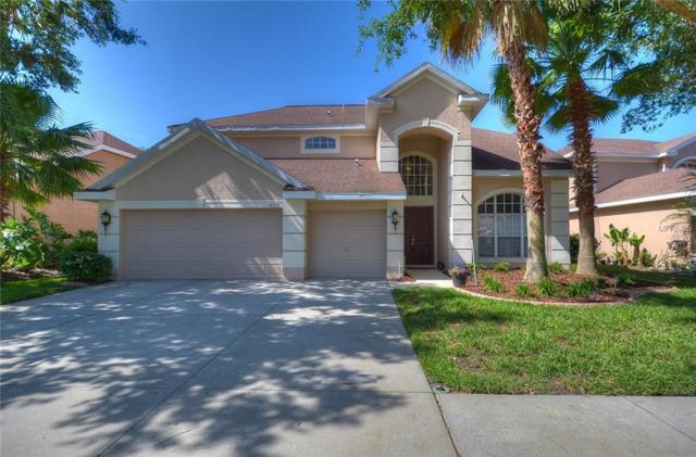 10217 Deercliff Drive, Tampa, FL 33647 (MLS #T3101958) :: Team Bohannon Keller Williams, Tampa Properties
